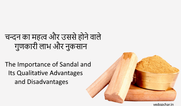 Sandalwood benefits & disadvantages