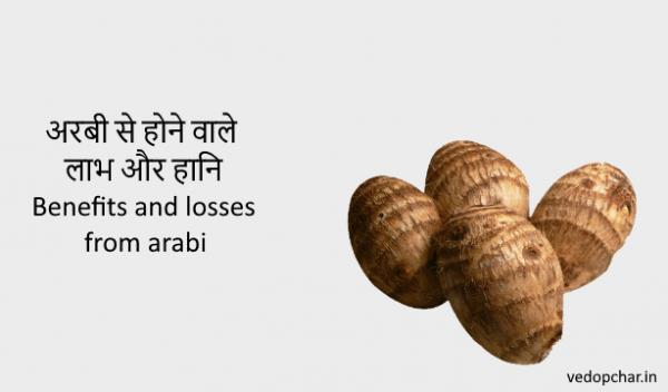 Benefits and losses from arabi|अरबी से होने वाले लाभ और हानि