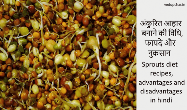 Sprouts diet recipes, advantages and disadvantages in hindi