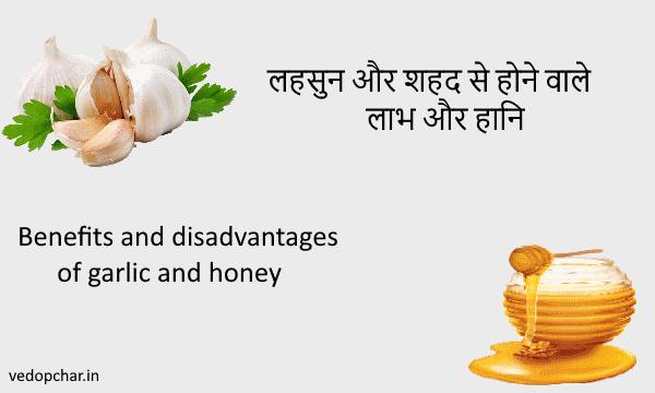Benefits and disadvantages of garlic and honey|लहसुन और शहद से होने वाले लाभ और हानि