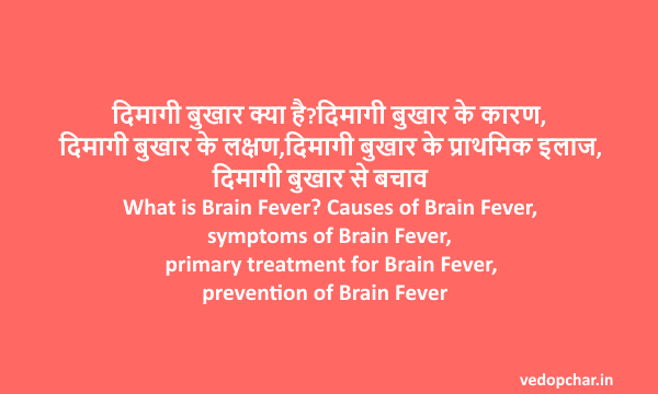 Brain Fever in hindi:दिमागी बुखार क्या है?कारण,लक्षण,इलाज,बचाव