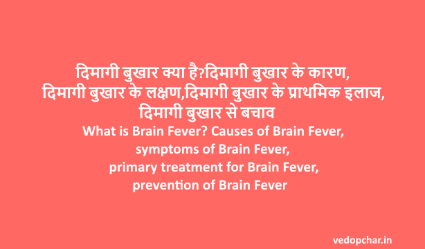 What is Brain Fever? Causes of Brain Fever, symptoms of Brain Fever, primary treatment for Brain Fever, prevention of Brain Fever