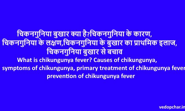 Chikungunya fever in hindi:चिकनगुनिया क्या है?कारण,लक्षण,इलाज,बचाव