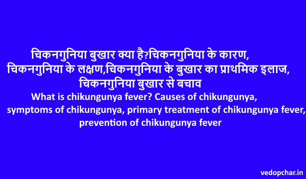 What is chikungunya fever? Causes of chikungunya, symptoms of chikungunya, primary treatment of chikungunya fever, prevention of chikungunya fever