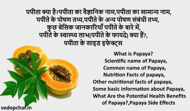 What is Papaya?Scientific name of Papaya,Common name of Papaya,Nutrition Facts of papaya,Other nutritional facts of papaya,Some basic information about Papaya,What Are the Potential Health Benefits of Papaya?,Papaya Side Effects