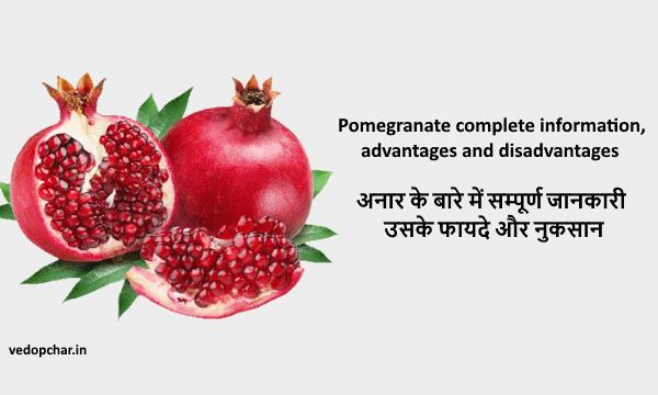 Pomegranate(अनार) के बारे में सम्पूर्ण जानकारी,फायदे और नुकसान