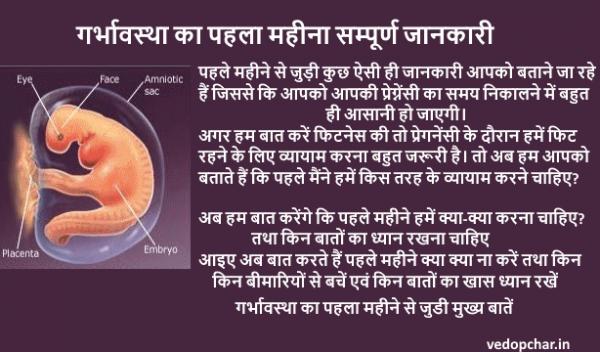 First month pregnancy in hindi:गर्भावस्था का पहला महीना हिंदी में