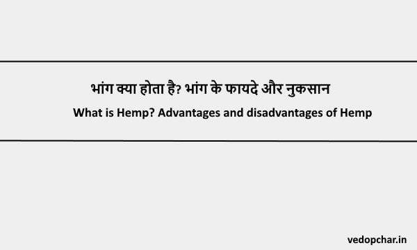 Hemp in hindi: भांग क्या होता है? भांग के फायदे और नुकसान