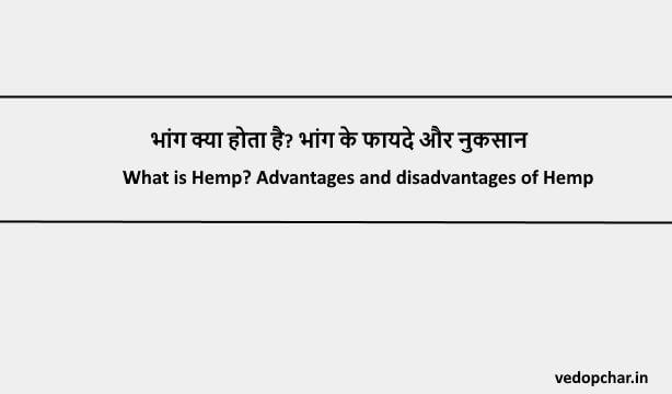 Hemp in hindi