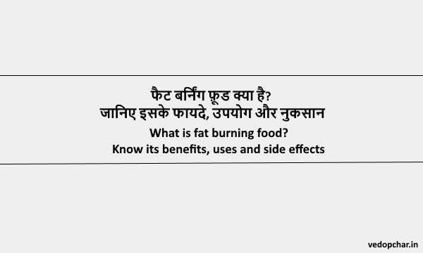 Fat Burning Food in Hindi:फैट बर्निंग फ़ूड क्या है?इसके फायदे, उपयोग और नुकसान