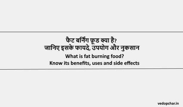 Fat Burning Food in Hindi