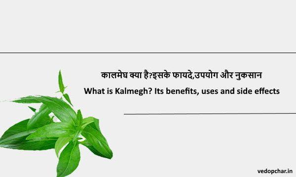 Kalmegh in hindi:कालमेघ क्या है?इसके फायदे,उपयोग और नुकसान