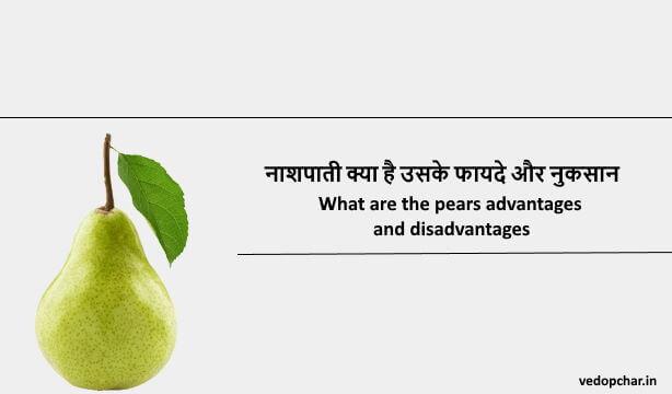 Pear Fruit in Hindi