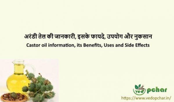 Castor Oil in Hindi : अरंडी तेल की जानकारी, इसके फायदे, उपयोग और नुकसान