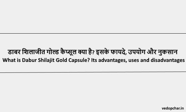Dabur Shilajit Gold Capsule in Hindi : डाबर शिलाजीत गोल्ड कैप्सूल क्या है? इसके फायदे, उपयोग और नुकसान