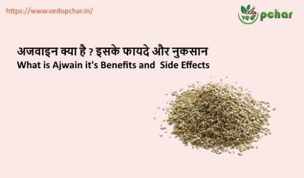 Ajwain in Hindi : अजवाइन क्या है ? इसके फायदे और नुकसान
