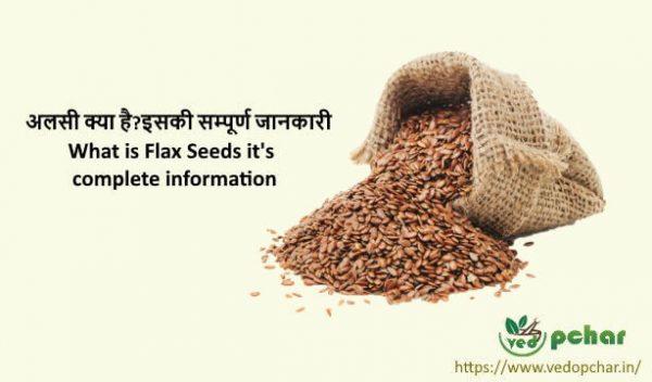 Flaxseed in Hindi-  अलसी क्या है?इसकी सम्पूर्ण जानकारी