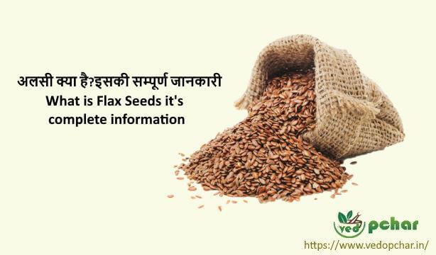 Flaxseed in Hindi