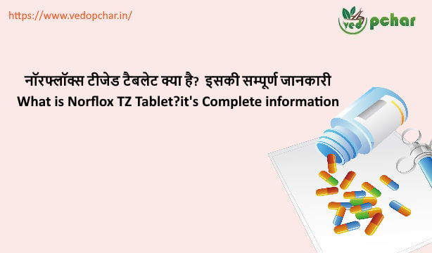 Norflox TZ Tablet in Hindi