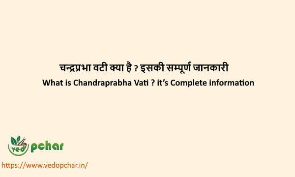 Chandraprabha Vati in hindi : चन्द्रप्रभा वटी क्या है ? इसकी सम्पूर्ण जानकारी