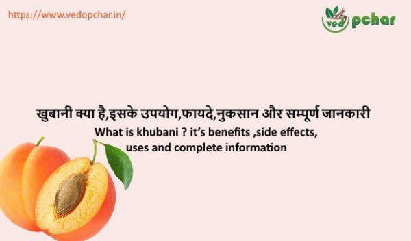 Apricot in Hindi : खुबानी क्या है,इसके उपयोग,फायदे,नुकसान और सम्पूर्ण जानकारी