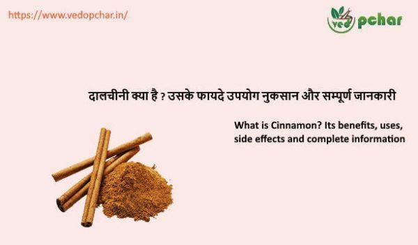 Cinnamon in hindi : दालचीनी क्या है ? उसके फायदे उपयोग नुकसान और सम्पूर्ण जानकारी