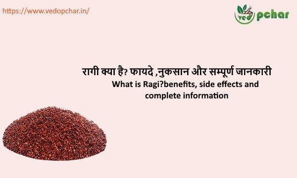 Ragi in Hindi : रागी क्या है? फायदे ,नुकसान और सम्पूर्ण जानकारी