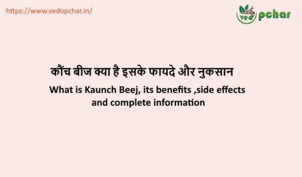 Kaunch Beej in Hindi : कौंच बीज क्या है इसके फायदे और नुकसान