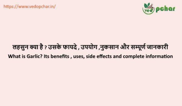 Garlic in Hindi : लहसुन क्या है, लहसुन के फायदे (Garlic Benefits in Hindi)