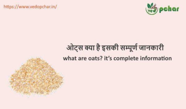 Oats in Hindi : ओट्स क्या है इसकी सम्पूर्ण जानकारी